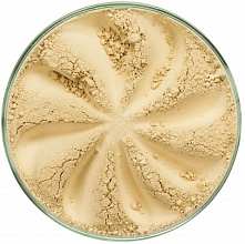 Concealer Light Touch Sand (402)